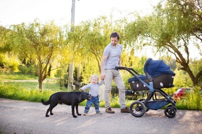 young-father-with-cute-little-baby-daughter-in-stroller-and-black-dog